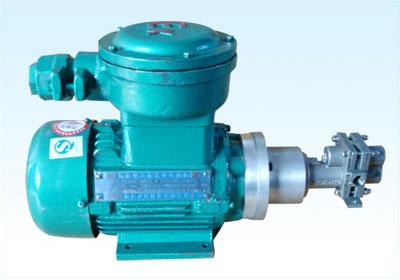 SCL-C/CT型不锈钢防爆齿轮泵系列