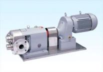 山东YZZ-A型不锈钢外转子齿轮泵系列
